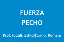 FUERZA PECHO