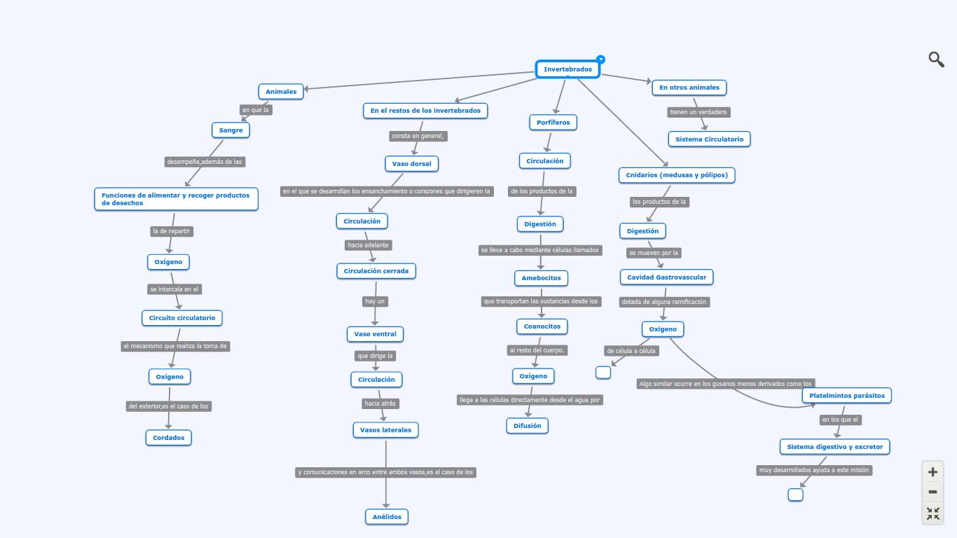 CES540: Mapa conceptual: INVERTEBRADOS