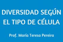 DIVERSIDAD SEGÚN EL TIPO DE CÉLULA
