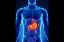 Módulo 13: Aparato Digestivo I