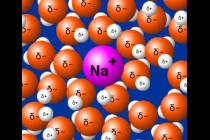 Módulo 7: Hidratación de iones