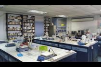 Trabajando en el laboratorio