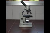 MÓDULO 1 : Microscopio