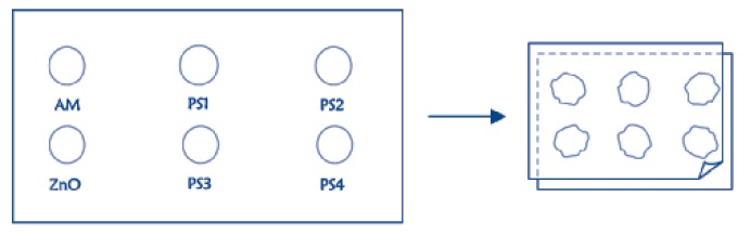 Representación de láminas de plástico con las muestras