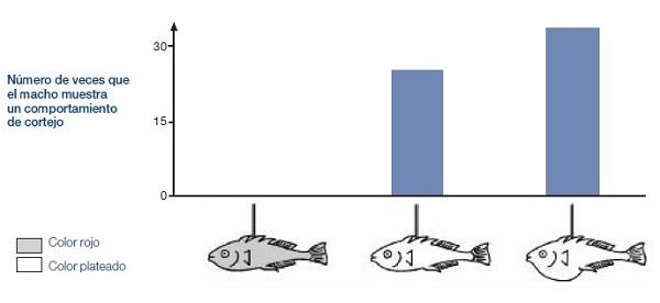 Resultados del experimento comportamiento del espinoso 2