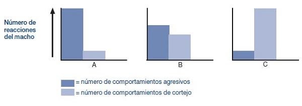 Resultados del experimento comportamiento del espinoso 4